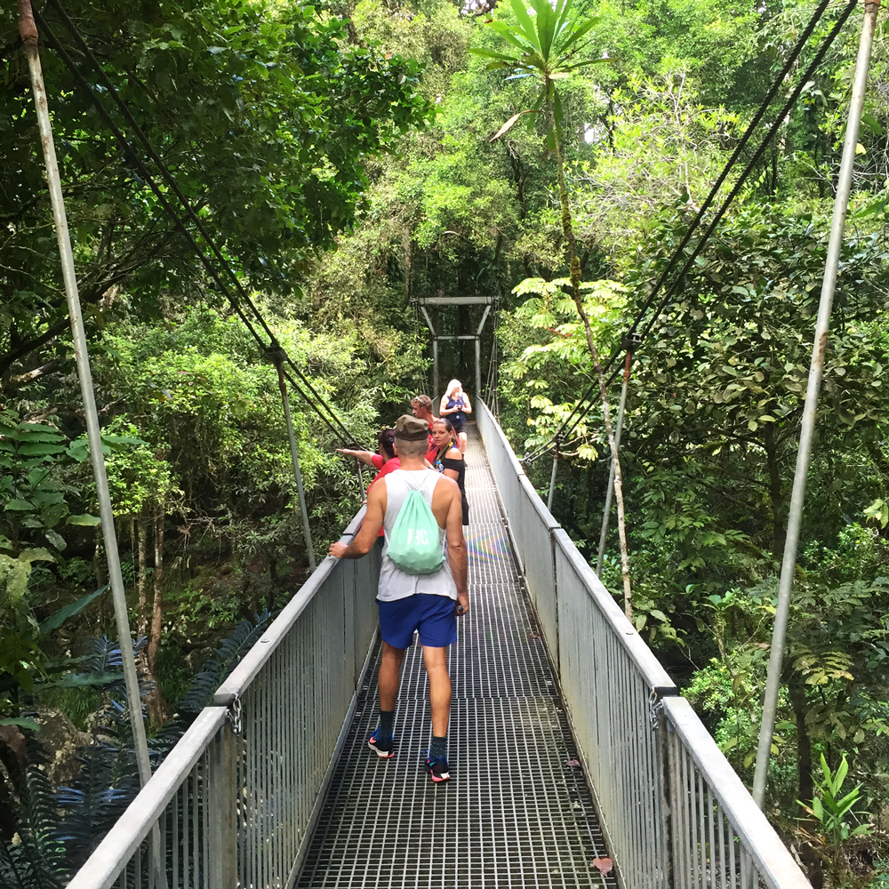 Mossman Gorge suspension bridge, Australia travel blog, things to do in Far North Queensland
