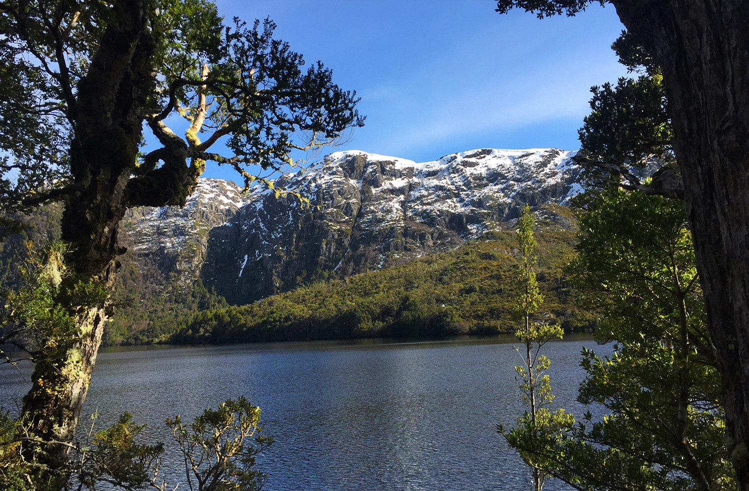 Cradle Mountain, Lake St Clair National Park, Fifth highest mountain in Tasmania, gay premium travel blog