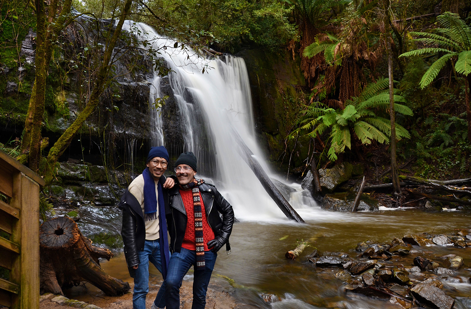 Lilydale Falls, Things to do in Launceston Tasmania